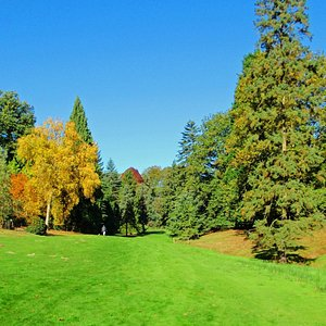 Valley Gardens in early Autumn