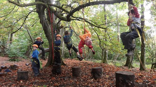 Climbing - harness and rope familiarisation never looked such fun!