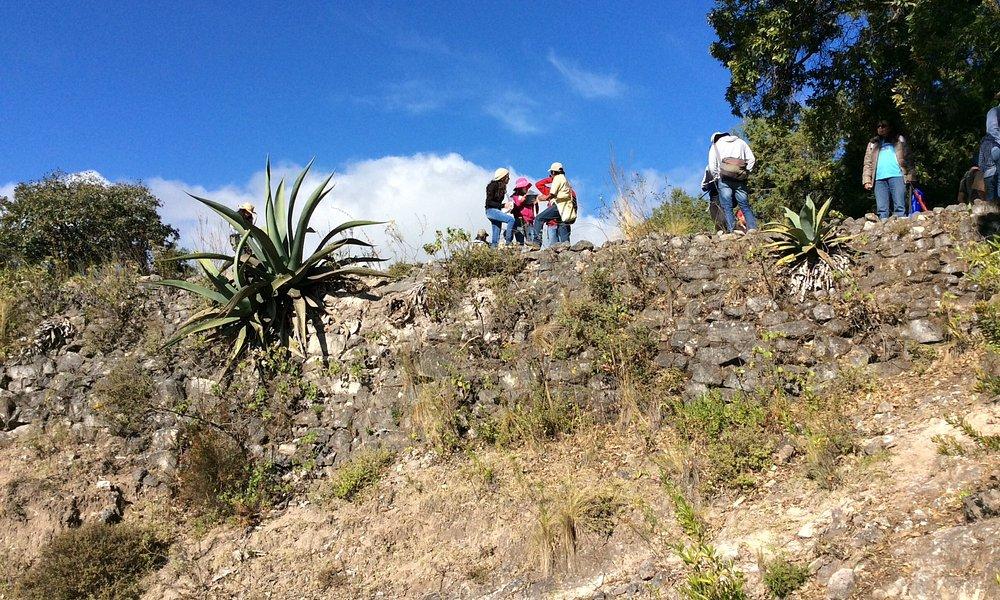 Lamabordo: estructura milenaria que permite a los mixtecos convive con la erosión del suelo.
