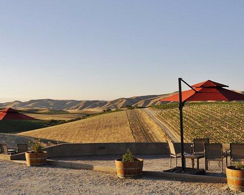 Picnic tables and patios with sweeping views at Vino Vargas.