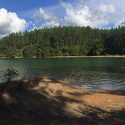 Reserva forestal La Yeguada