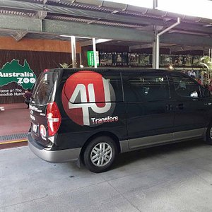 4U Transfers and Tours at Australia Zoo