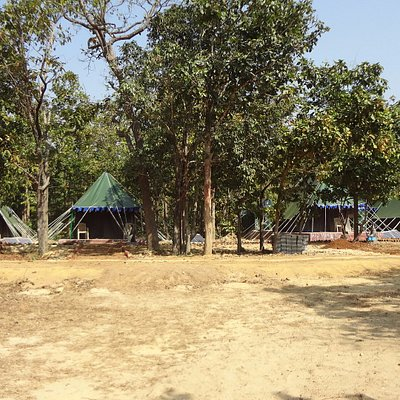 Tent Accommodation by Forest Department at Rassia