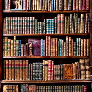 one of our bookcases....
