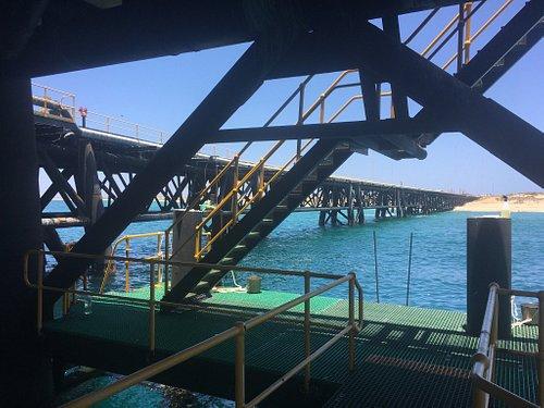 Navy Pier Exmouth
