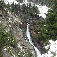 Zirbenwald mit Wasserfall
