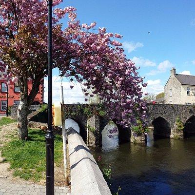 Boyne Bridge at Trim