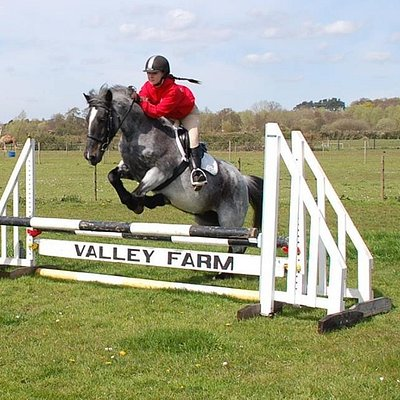Show jumping competition at Valley Farm
