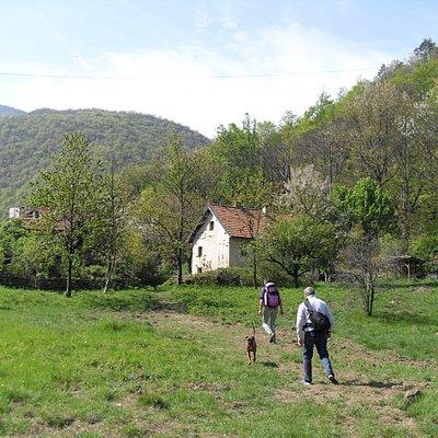 Prato Case Veireira