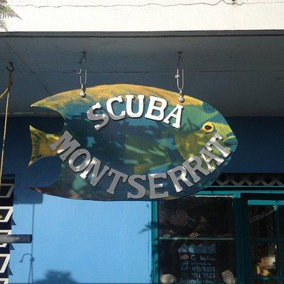 Scuba Montserrat Fish