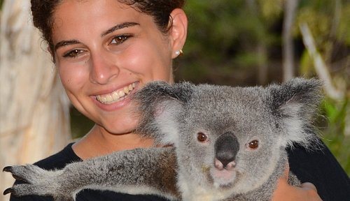 Billabong Sanctuary is one of the few places in the world where you can cuddle a koala!