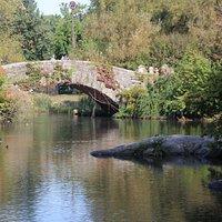 The Pond - Bridge