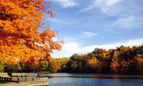 Visit the park in the month of October. The colors are beautiful this time of year!