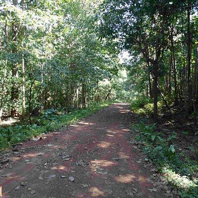 #KangerVally, #Tirathgarh, #Jagdalpur, #Bastar, #CGTourism, #Chattisgarh