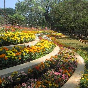Pondicherry Botanical Gardens