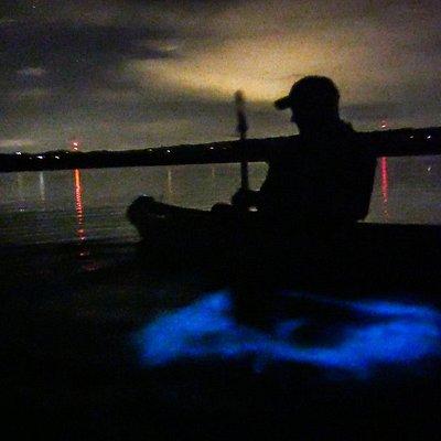 Beautiful glowing of Vieques Biobay.