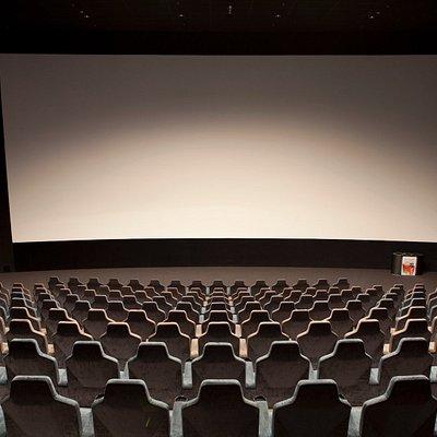 Kino 1 (260 seats)
