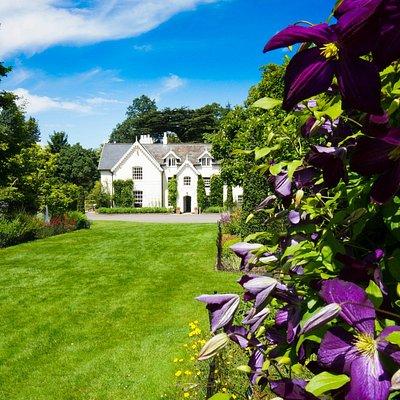Beautiful Jermyn's House