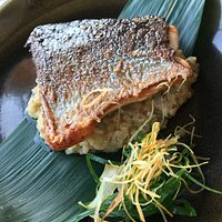grilled salmon with mushroom risotto