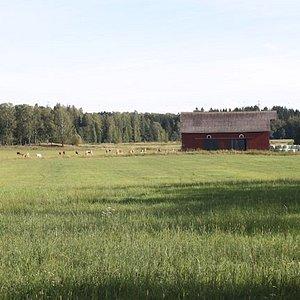 Viikki, Helsinki, Finland