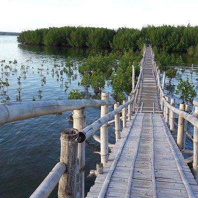 Mobod Fish Sanctuary