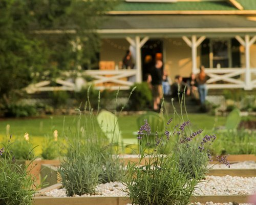 Check out weekend events like live music and croquet