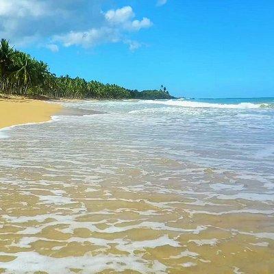 Playa Las Canas- der Strand für Entdecker