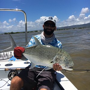 Oahu Giant trivially on fly