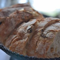warm crusty bread