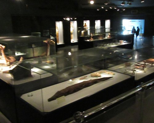 Interior of the Mummification Museum. It's only this one room.