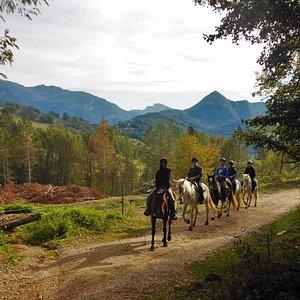 disfrutando del valle a caballo