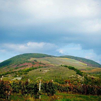 Nagy-Eged-hegy, a fotót készítette: Szántó György