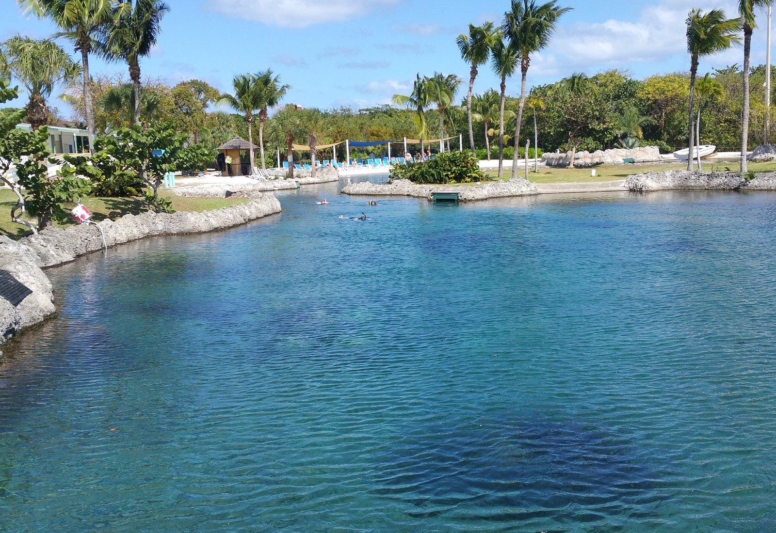 Cayman Turtle Farm: Island Wildlife Encounter