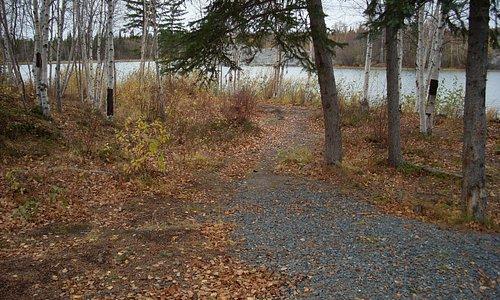 Walking trail near the river