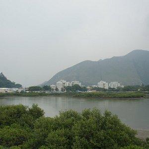 Views of the Tai O