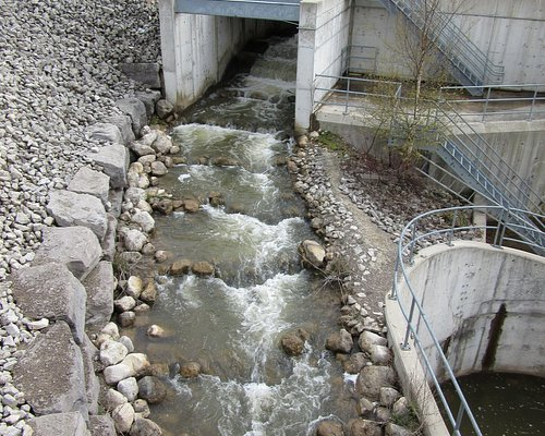 View of the fishway from the bridge