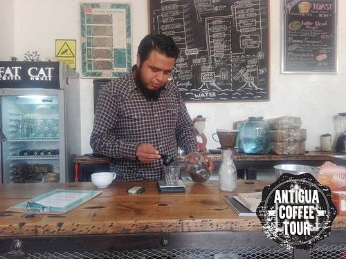 Our experienced baristas show you everything you need to know to prepare the best coffee at home