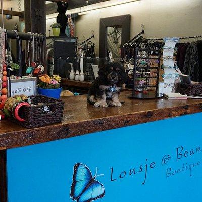 Lousje & Bean's greeter -Charlie!