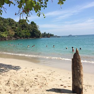The Manuel Antonio tour was the highlight of our trip!