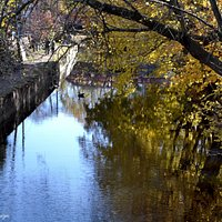 Delaware Canal