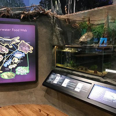 Inside Discovery Center