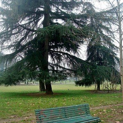 Uno scorcio del Parco Ravizza