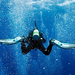 Open water and Advanced Open water certification courses are available almost every week!