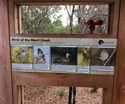 Phillip Reserve