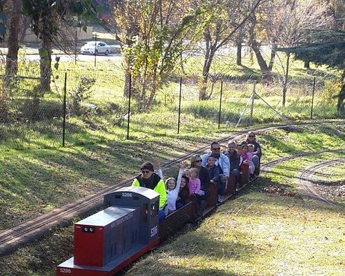 Family Fun on a Little Diesel Train