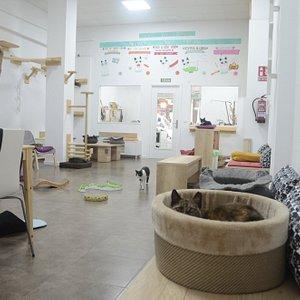 Foto del interior del espacio de convivéncia
