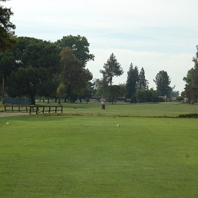 Mature trees line the fairways at Rancho Del Rey.