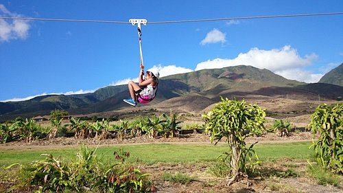 Classic cannon ball helps our smaller guests go fast on the zipline!
