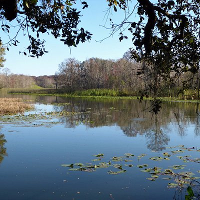 Haynes Creek