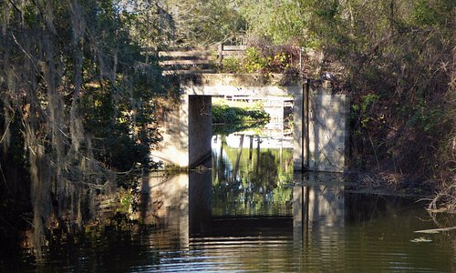 Bridge to Blount's Island